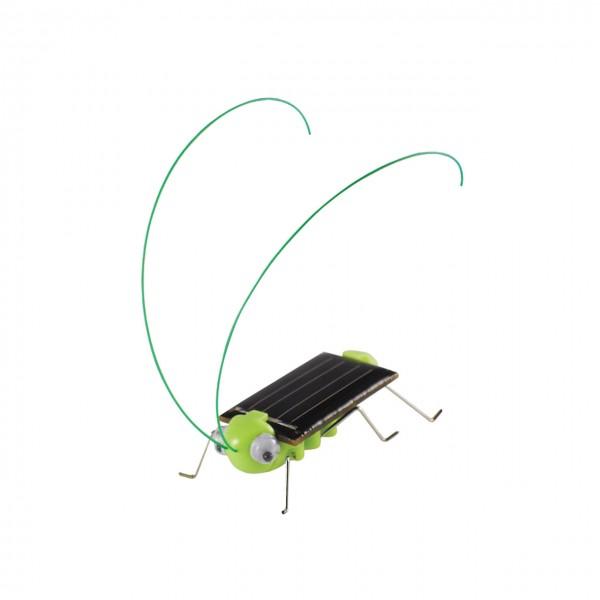 Solar Grille